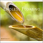 CD: Endless Floating - Copyright STEINKLANG